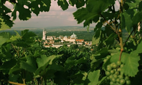 Austria's oldest winery marks 900 years