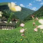 """At the Grüner Baum organic hotel in Bad Gastein you can choose from treatments which use products made from organic, local mare's milk. The Mare's Milk Facial is a treatment for sensitive skin to prevent premature ageing (apparently mare's milk """"contains everything skin needs to regenerate""""). For the full Cleopatra, treat yourself to the body treatment, which mixes milk, cocoa butter and shea butter for an exfoliation, bath cream and body wrap.Photo: Grüner Baum Hotels"""