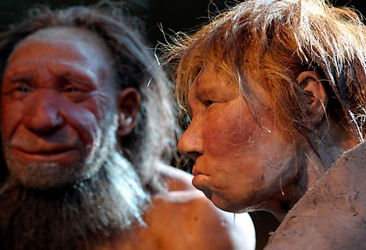 Oldest traces of man found in Austria