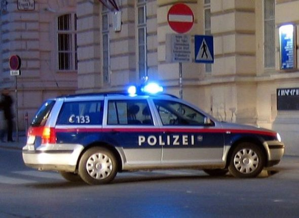 Vienna prisoners 'could work in police stations'