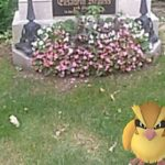 Cemetery asks Pokémon players to hunt 'piously'
