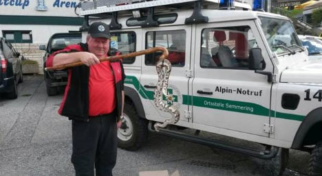 Walkers stumble across two giant snakes in Austria