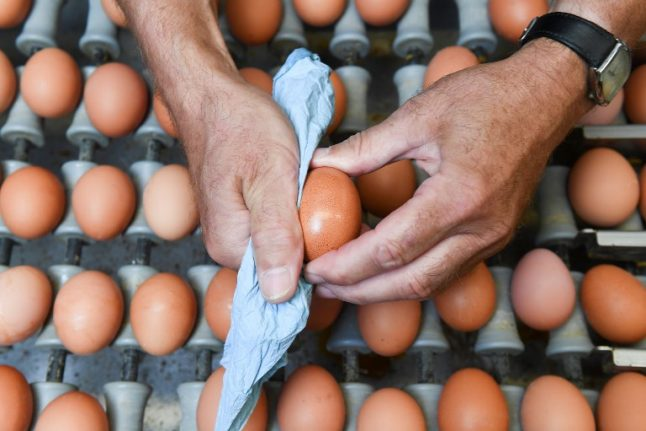 Austria finds insecticide in egg products