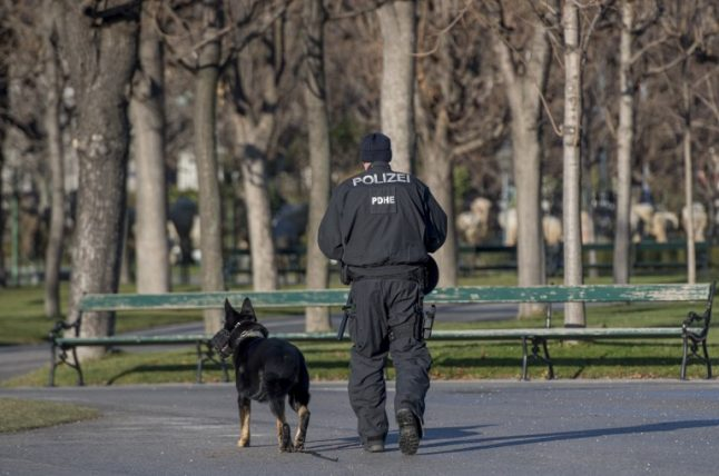 One arrest after four injured in separate Vienna knife attacks