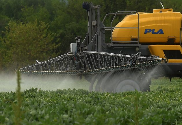 Austria to become first country in EU to ban use of glyphosate weedkiller