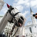 So why is Vienna the most liveable city in the world?