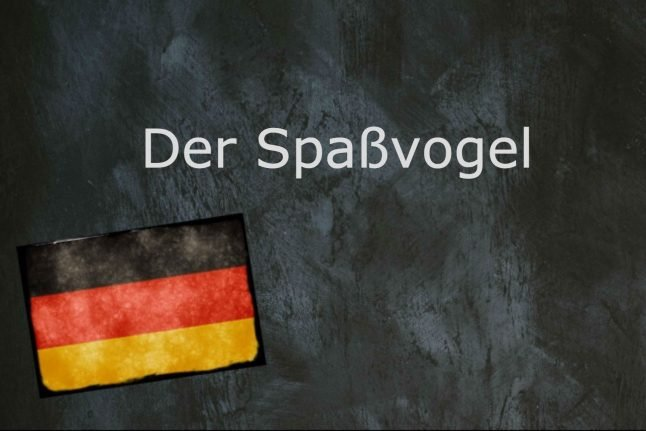 German word of the day: Der Spaßvogel