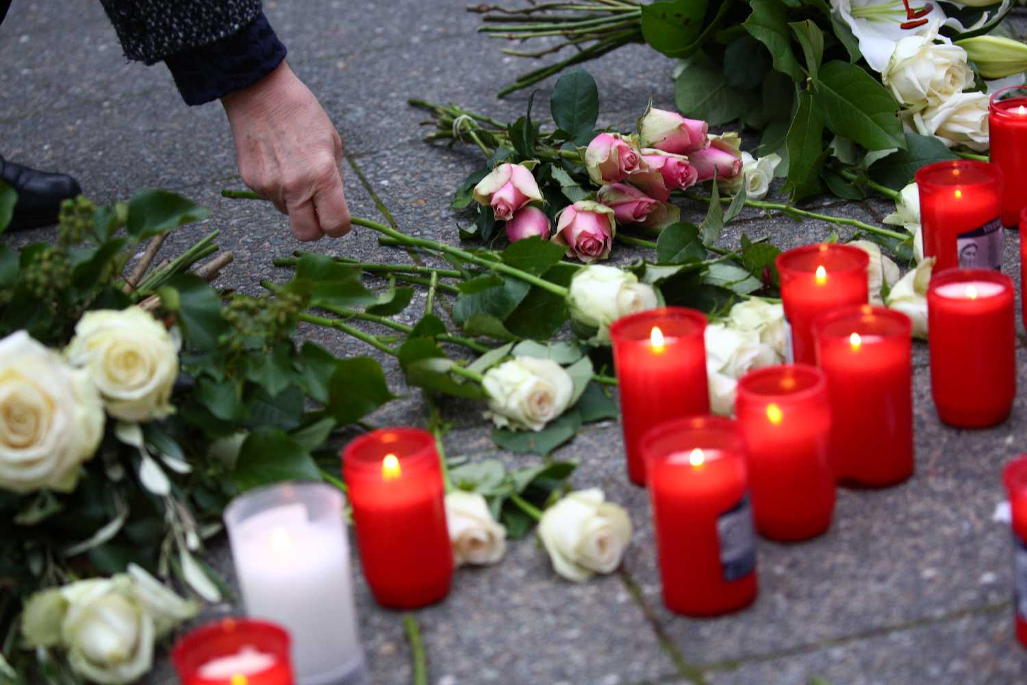 Families of Vienna terror attack victims sue Austrian government